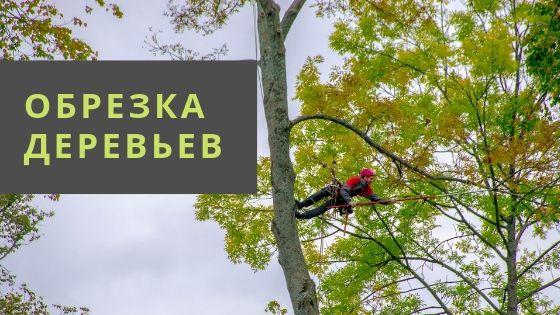 Удаление деревьев частями
