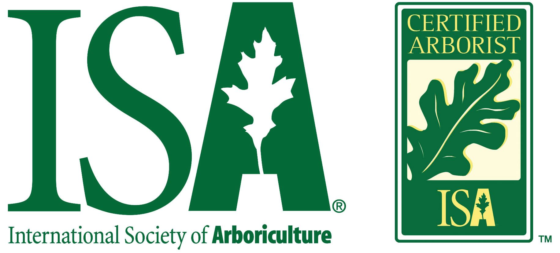 Арбористика. Индивидуальное содержание деревьев