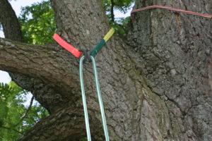 Основное снаряжение в арбористике для перемещения в кроне дерева.